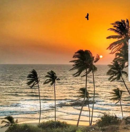Vagator Beach, Kerala